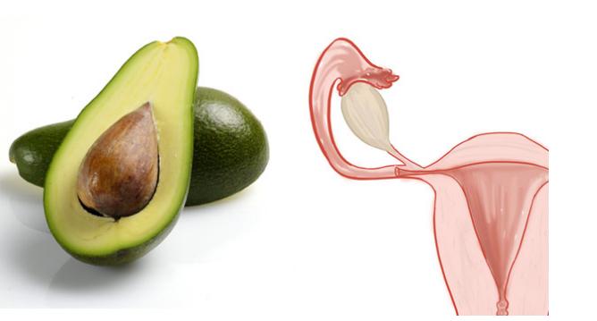 أطعمة تشبه أعضاء من جسم الإنسان أفوكادو