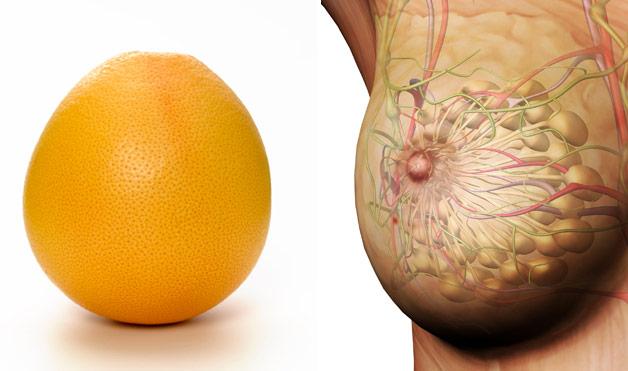 أطعمة تشبه أعضاء من جسم الإنسان البرتقال والثدي
