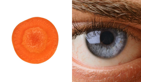 أطعمة تشبه أعضاء من جسم الإنسان العين والجزر