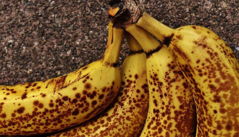 الموز الطازج
