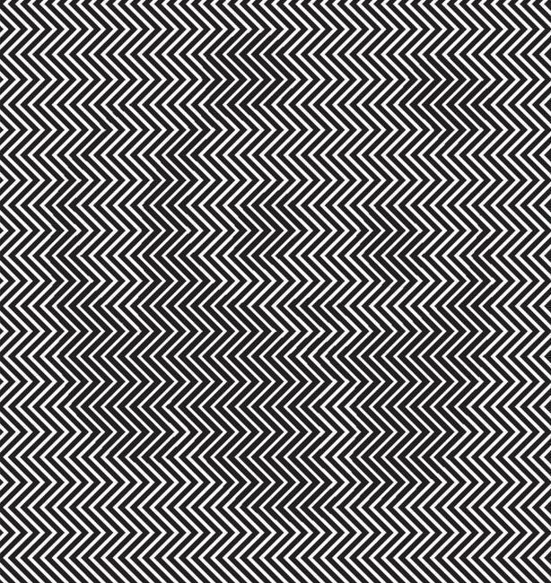 هل بإمكانك معرفة الحيوان المتخفي بالصورة؟