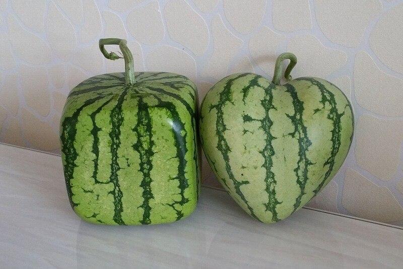 فواكه وخضروات بأشكال غريبة 1