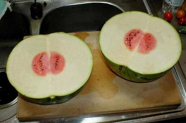 قمة النحس في البطيخ